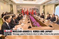 S. Korea, Japan may feel need to develop nukes in light of N. Korean threat: U.S.
