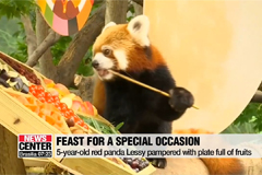 Pre-Chuseok feast for animals at Everland zoo