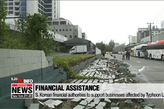 S. Korean financial authorities to support businesses affected by Typhoon Lingling