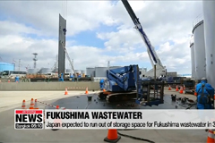 Japan's environment minister says there is no other way to dispose of Fukushima wastewater apart from discharging it into sea