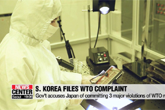 Seoul files WTO complaint over Tokyo's export curbs on Wed.: Trade Ministry
