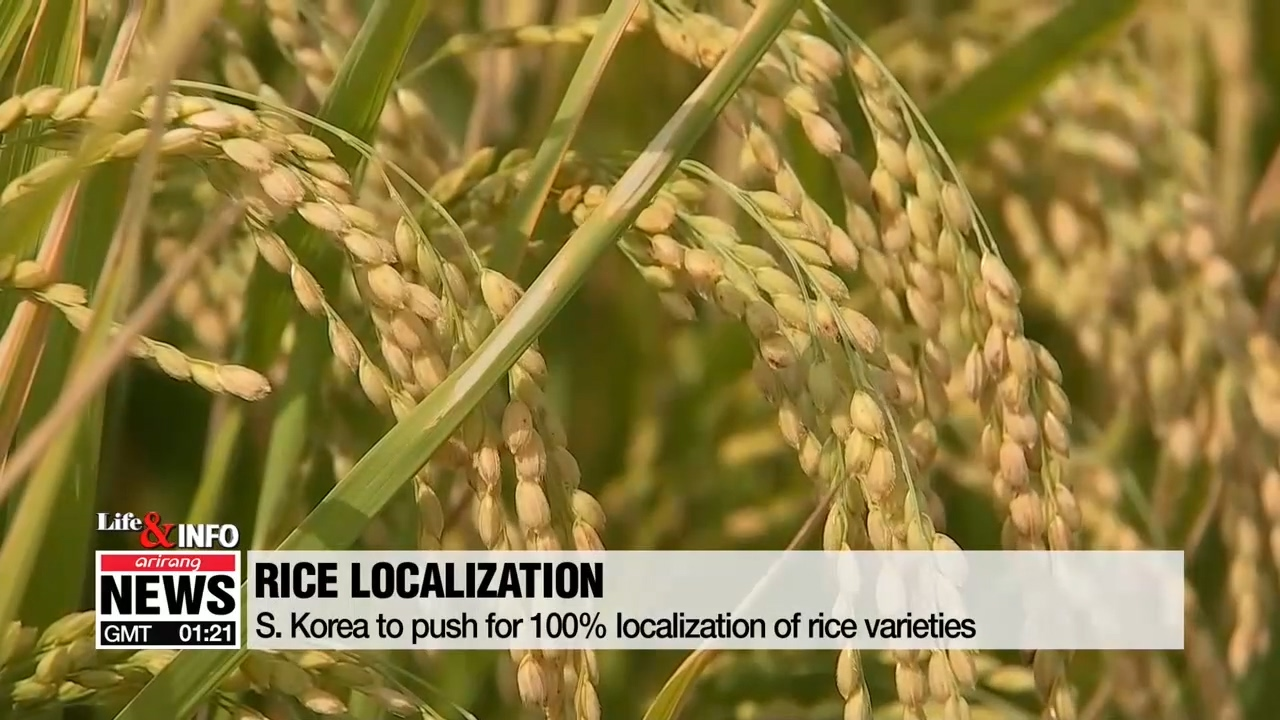 S. Korea to push for localization of rice varieties