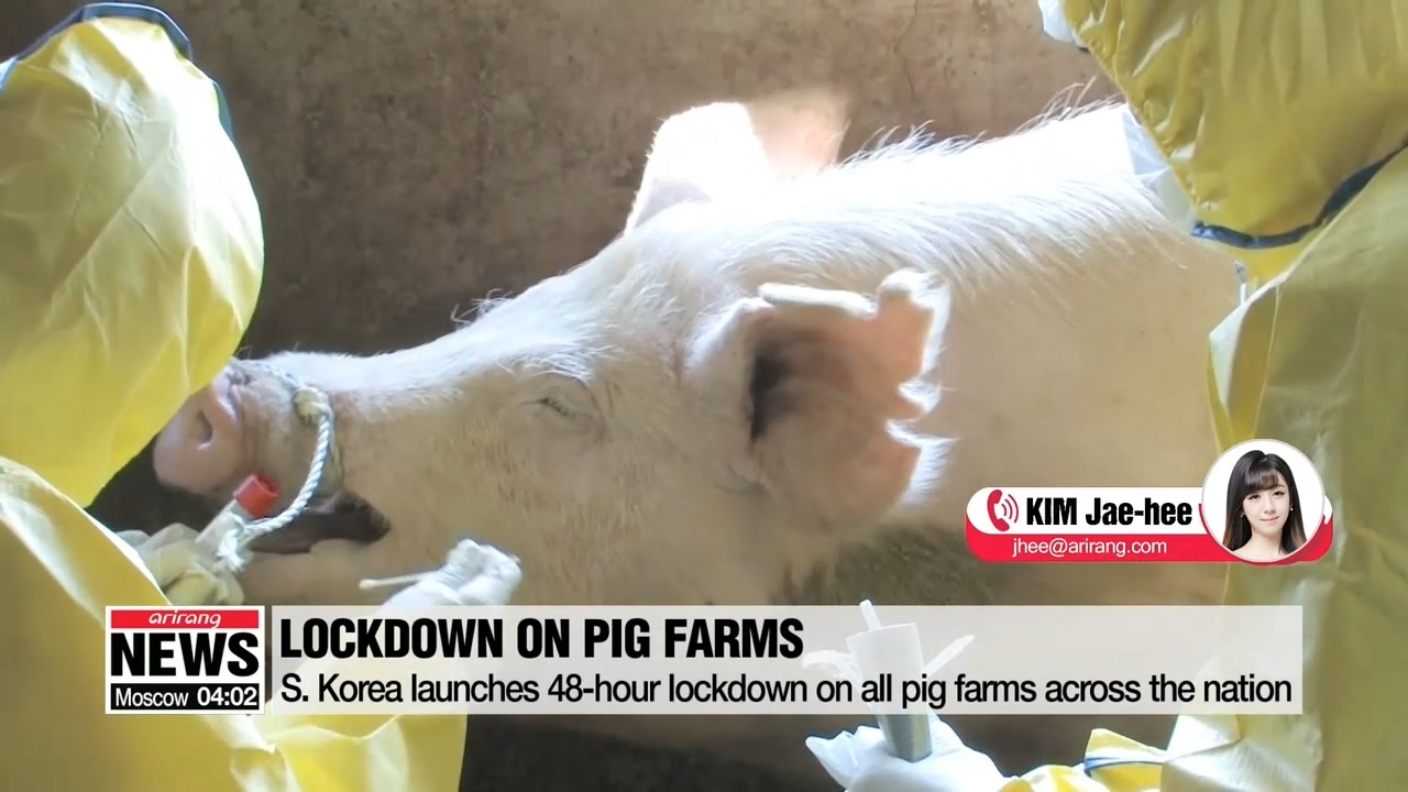 First official case of African swine fever reported in South Korea
