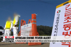 S. Korea remains on high alert over African swine fever, but no new cases reported overnight