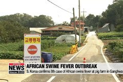 S. Korea confirms 8th case of African swine fever at pig farm in Ganghwa Island