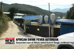 Another suspected case of African swine fever reported in Yangju, Gyeonggi-do Province