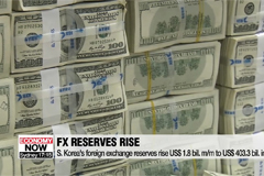 S. Korea's foreign exchange reserves rise US$ 1.8 bil. m/m to US$ 403.3 bil. in Sept.