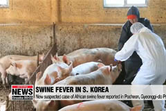 Helicopters spray disinfectant over DMZ area for third day to contain African swine fever