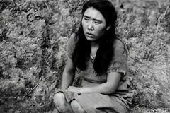 Japan film festival decides not to show 'comfort women' movie and other participants withdraw their movie in protest