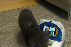 S. Korea's growing pet-tech industry taking nation by storm