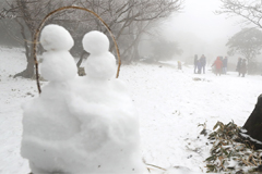 Heavy snow on  mountainous regions of Jeju and Gangwon-do, winter chill moves in