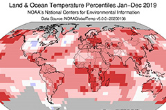 2019 was second-hottest year