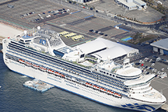 At least 13 more newly confirmed cases on the Diamond Princess cruise ship