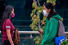 Some European countries make face masks compulsory on public transport amid COVID-19 pandemic