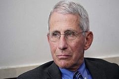 Fauci warns U.S. could face 'needless suffering and death' if it reopens prematurely