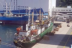 16 crewmembers from Russian vessel docked in Busan test positive for COVID-19