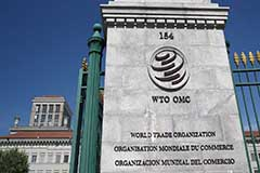 Global trade expected to drop by 18.5% in Q2 due to COVID-19: WTO