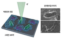 KAIST research team uses nano-