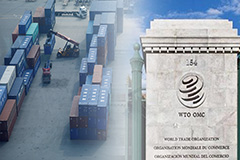 WTO faces leadership vacuum amid growing protectionism, COVID-19 fallout