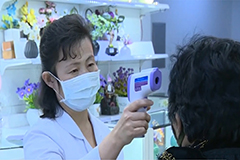 N. Korea has tested about 1,200 people for COVID-19, around 700 are in quarantine: WHO