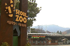 Seoul Grand Park to reopen botanical garden and indoor zoo starting August