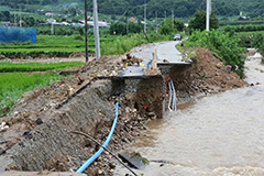 12 dead, 14 missing due to torrential downpours in S. Korea