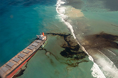 Japan sending disaster relief team to Mauritius over fuel leakage after ship ran aground