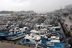 Typhoon Jangmi lands on S. Korea's southern coast but soon disappears