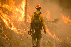 At least 33 people killed in wildfires blazing in 3 U.S. west coast states