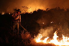Brazil's Pantanal consumed by flames, threatening biodiversity