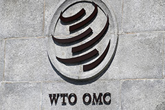 WTO rules U.S. tariffs imposed on China illegal, insists they violate international trade rules