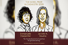 Two Scientists Awarded Nobel Prize in Chemistry for Genome Editing