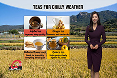 Chilly autumn winds all day under sunny skies