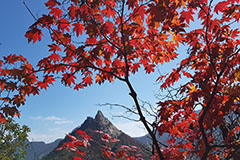 Hikers enjoy Seoraksan Mountain's beauty while following fall virus prevention guidelines