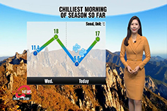 Chilly autumn morning, lowest of season so far