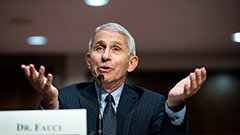 Safety, effectiveness of COVID-19 vaccine to be decided by early December: Fauci