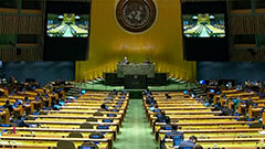 UN Third Committee adopts reso