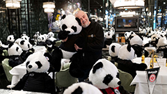 German restaurant stages 'panda-mic' protest against COVID-19 lockdown