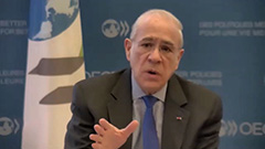 Digitalization, joblessness from COVID-19 will outlast pandemic: OECD Secretary General exclusive interview