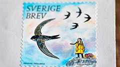 Climate activist Greta Thunberg to feature on Swedish stamps