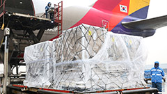 Asiana Airlines flies in 20 tons of eggs from the U.S. to address shortage