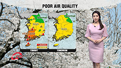 Yellow dust alerts lifted for