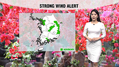 Good air quality tomorrow...be wary of strong winds
