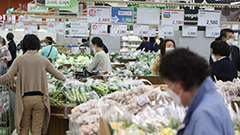 S.Korea's consumer price index in May records biggest jump in 9 years, up 2.6%
