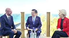 Moon holds bilateral talks with leaders of Australia, Germany and EU