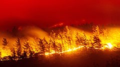 Recent wildfires in North America, Siberia lead to largest global total of wildfire carbon emissions for July
