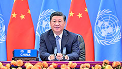 Xi Jinping unveils specific goals of China's 'common prosperity'