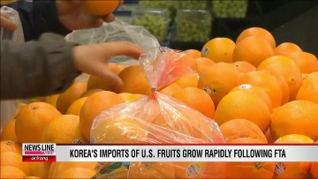 U.S. Fruit Shipments to Korea Soar after KORUS FTA