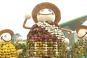 Goyang autumn flower festival