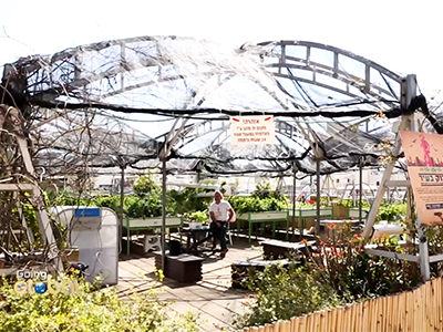 Going Global _ Go Green : Rooftop farms in Tel Aviv _ Ep74